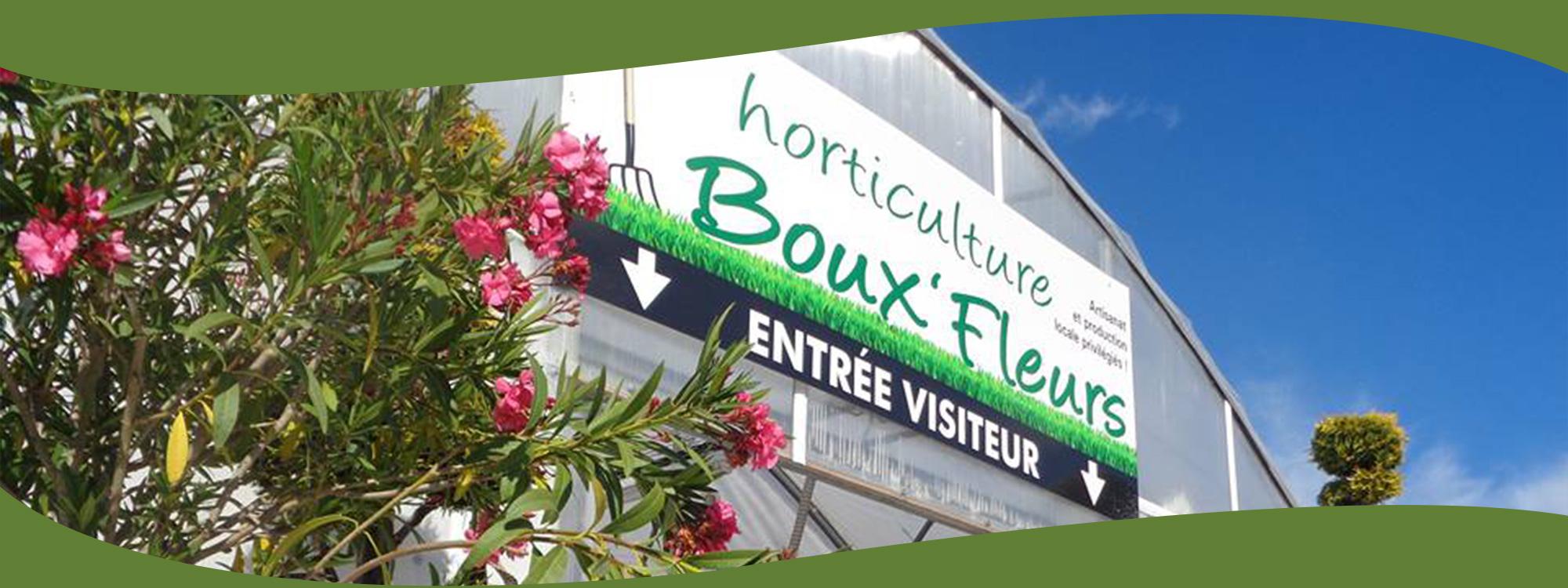 Boux fleurs horticulteur ventes de plantes fleurs for Vente plante et arbuste